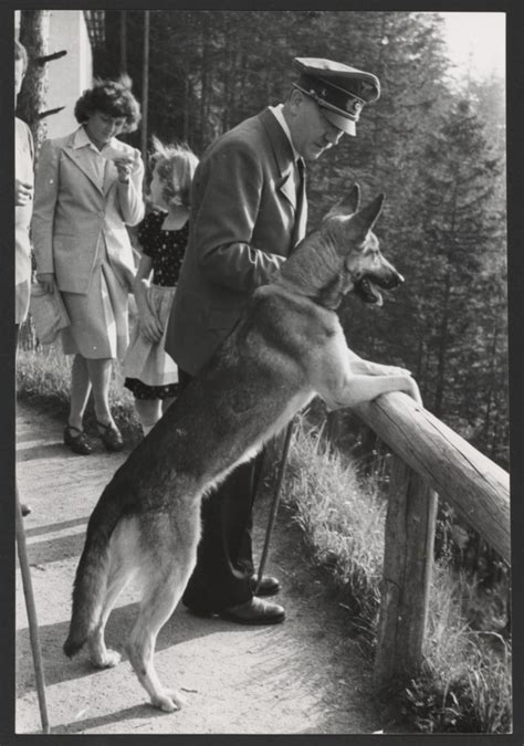 [Hitler and Blondi] (Getty Museum)
