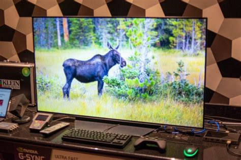LG CX 48-inch OLED (OLED48CXPUA) Review   Trusted Reviews