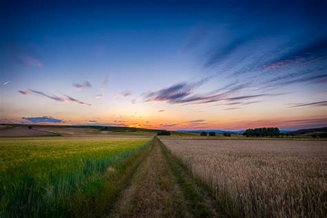 God's Harvest Feasts: His Assurance of Hope for Mankind