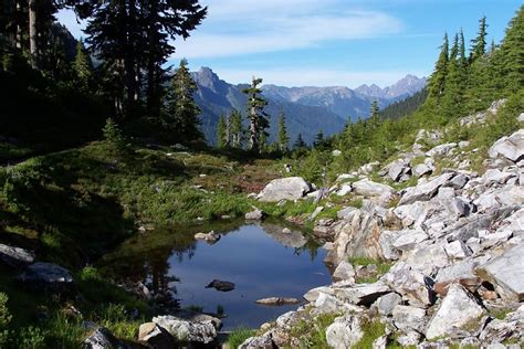 Olympic National Park: One of the wildest places left in
