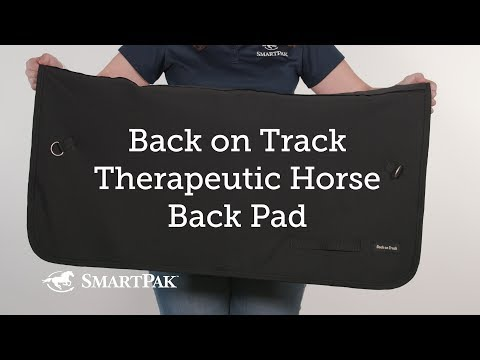 Back on Track Royal Tendon Boots | Horze