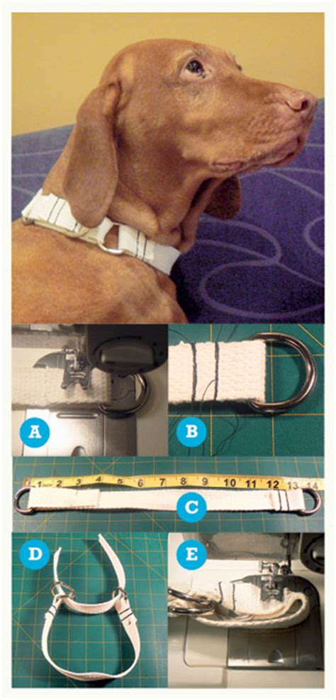 Crafting a Martingale Collar | The Bark