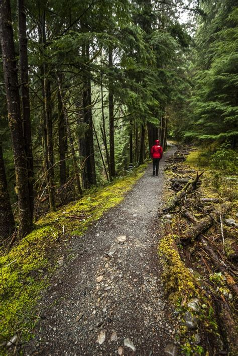 Enchanted Valley Trail to Pony Bridge   Outdoor Project